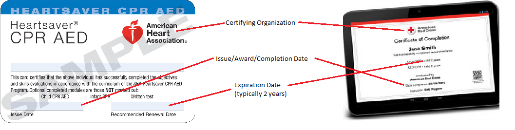 Sample_Certification_Cards.png